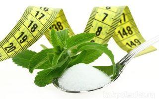 Сахарозаменитель стевия: полезные свойства и противопоказания. отзывы о стевии