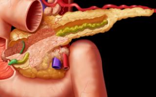 Недостаточность поджелудочной железы. виды, причины, лечение%title%%