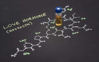 Гормон счастья серотонин — что это такое и его действие на организм