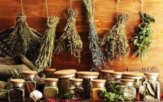 Киста печени: причины возникновения у взрослых и лечение