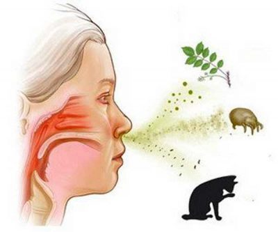 Чешутся волдыри на теле, спине, появились на коже у детей от укусов комаров и чешутся: причины и лечение