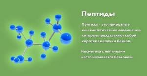 С-пептиды: что это такое и какова норма
