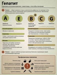 Гепатиты: их виды и классификация, самый опасный тип, какие бывают способы заражения, стадии