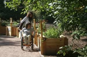 Оформление инвалидности в 2018 году: когда делать, документы, сроки - пошаговая инструкция