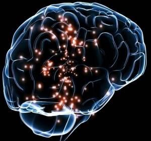 Гормоны человека: их список, функции, влияние на организм - таблица