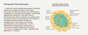 Гормон глюкагон - его функции и механизм действия