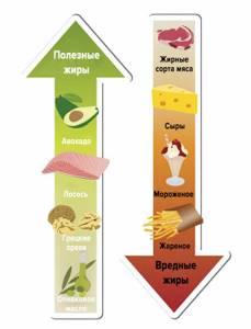 Триглицериды повышены в анализе крови: что это значит, лечение, диета
