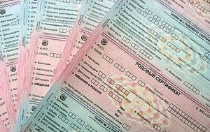 Родовой сертификат: сумма в 2018 году, что он дает, когда получать, необходимые документы