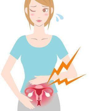 УЗИ яичников у женщин: норма, как проходит, подготовка, расшифровка результатов