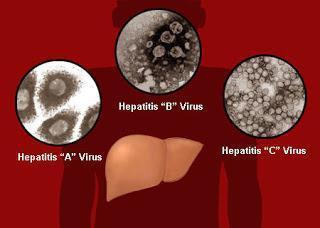 Всё, что нужно знать о прививке от гепатита А, В и С. Противопоказания и побочные эффекты
