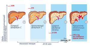 Как сдавать анализ на гепатит С и В