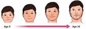 Влияние тестостерона и норма у детей в зависимости от возраста