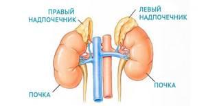 Заболевания надпочечников при избытке и недостатке гормонов
