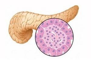 Что такое диффузные изменения поджелудочной железы, признаки, симптомы, диагностика, лечение