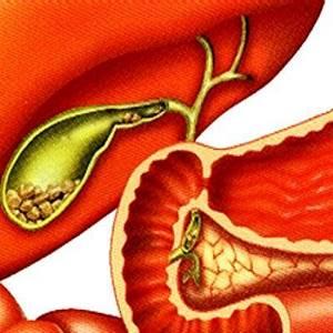 Гепатит ttv — симптомы заболевания, лечение