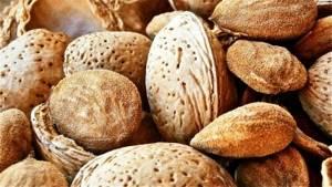 В каких продуктах питания содержится серотонин