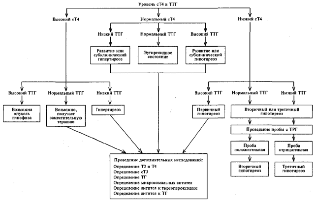 Значение тиреотропного гормона (ТТГ) при беременности