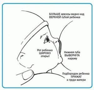 Трещины на сосках: причины и секреты быстрого лечения