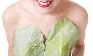 Чем полезен капустный лист при лактостазе, мастопатии и других проблемах груди