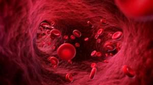 Что такое печёночные трансаминазы: их норма в крови и повышение активности