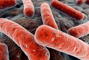Туберкулез простаты: симптомы и пути заражения, как лечится, и какие анализы сдавать
