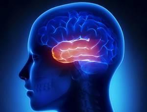 Если кортизол понижен у женщин и у мужчин: симптомы и лечение