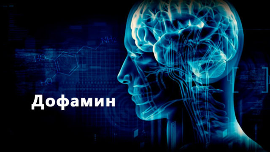 Гормон дофамин - что это такое