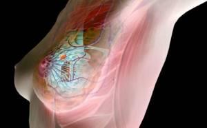 Можно ли делать массаж при мастопатии молочной железы
