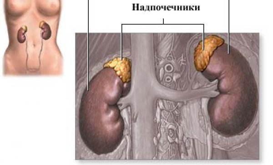 Аденома надпочечников у женщин и у мужчин: симптомы и лечение