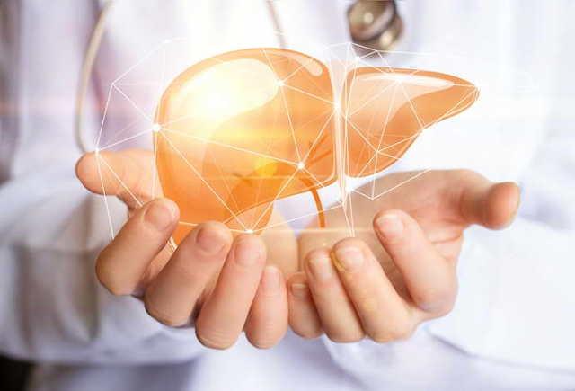 Печень и холестерин - взаимосвязь и лечение